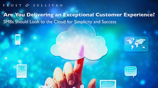 14484070 thumb mash frost sullivan are you delivering best cx eb resource center en 1